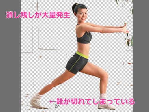 photoshop_elements編集画面30